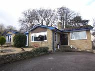 Detached Bungalow for sale in Scalby Road, Scalby...