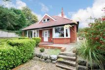 Detached Bungalow for sale in Stepney Road...
