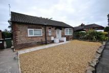 3 bed Detached Bungalow to rent in Pinfold Drive Cheadle...