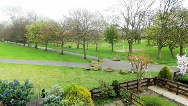 Adjacent Park Views: