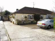 Bungalow for sale in Bushey