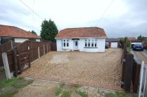 Detached Bungalow in Carisbrooke Drive...