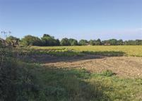 Mill Lane Land for sale