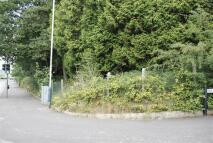 Harries Road Land