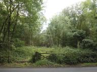 Land for sale in Pirbright Road, Normandy...