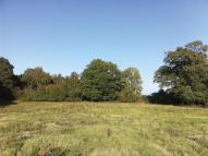 Land in Cathill Lane, Ockley...