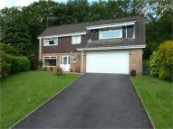 4 bed Detached home in Glade Close, Coed Eva...