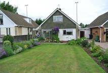 Detached Bungalow for sale in Station Road, Pontnewydd...