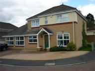 4 bedroom Detached property for sale in Cory Park, Abbey Fields...