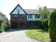 Detached house to rent in Chelmsford Road...