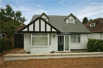 Detached property for sale in Tippendell Lane...