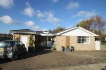 Bungalow for sale in The Street, Bearsted...