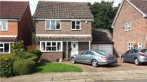 Detached home to rent in Dukes Orchard, Bexley