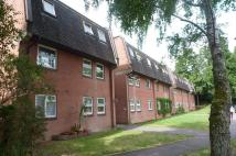 3 bed Flat to rent in 3 bedroom 1st Floor...