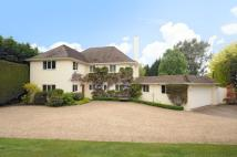 4 bedroom Detached property in Lady Margaret Road...