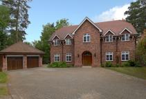 6 bed Detached property to rent in Sunning Avenue...