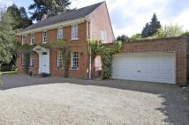 4 bed Detached home to rent in Woodlands Ride, Ascot...