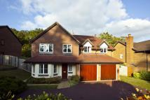 5 bedroom Detached house in Rushmere Place...