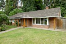 Bungalow in Norton Park, Sunninghill...