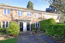 3 bedroom semi detached property in Haddon Close...