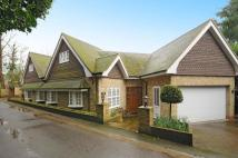4 bed semi detached property to rent in Cobbetts Hill, Weybridge...