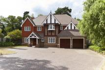 5 bedroom Detached property to rent in Kingsgate...