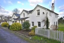 5 bed Detached property to rent in Burhill Park...