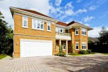 5 bedroom Detached home to rent in Broom Way, Weybridge...