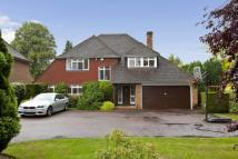 5 bed Detached home to rent in Ashley Park Avenue...