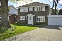 4 bedroom Detached home to rent in Pennington Drive...