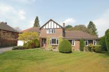 5 bedroom Detached house to rent in Fairmile Park Road...