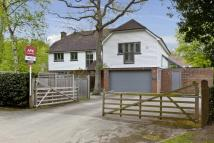 6 bed Detached house to rent in Water Lane, Cobham, KT11