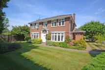 4 bedroom Detached property to rent in The Knoll, Cobham, KT11