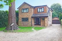 4 bedroom Detached house to rent in Stoke Road, Cobham, KT11
