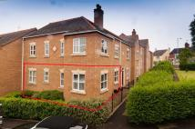 Walnut Tree Court Flat to rent