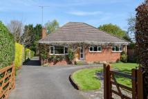 Detached Bungalow in Maidenhead - Cliveden...