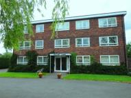 Willow Lawn Flat to rent