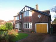 Hartington Road house to rent