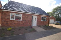 4 bed Detached Bungalow in Jubilee Road, Watton...