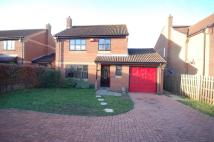 4 bedroom Detached property in Norwich Road...