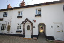 Cottage to rent in Brandon Road, Watton...