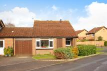 Detached Bungalow for sale in Goldsworth Park, Woking