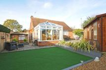 2 bed Detached Bungalow in St Johns, Woking