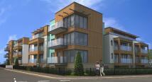 new development in Olivia Court...