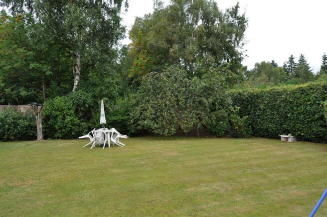 New Garden 1.jpg