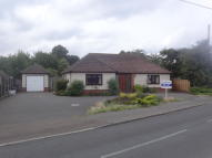 Detached Bungalow to rent in Firs Road, West Mersea...