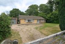 2 bed Detached Bungalow for sale in Ifold