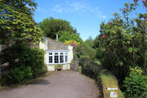 Whitelye Road Cottage to rent