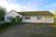 3 bed Detached Bungalow for sale in 3 Wassail Close...