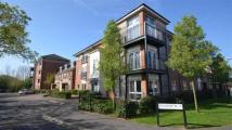 2 bedroom Apartment in Modern and attractive...
